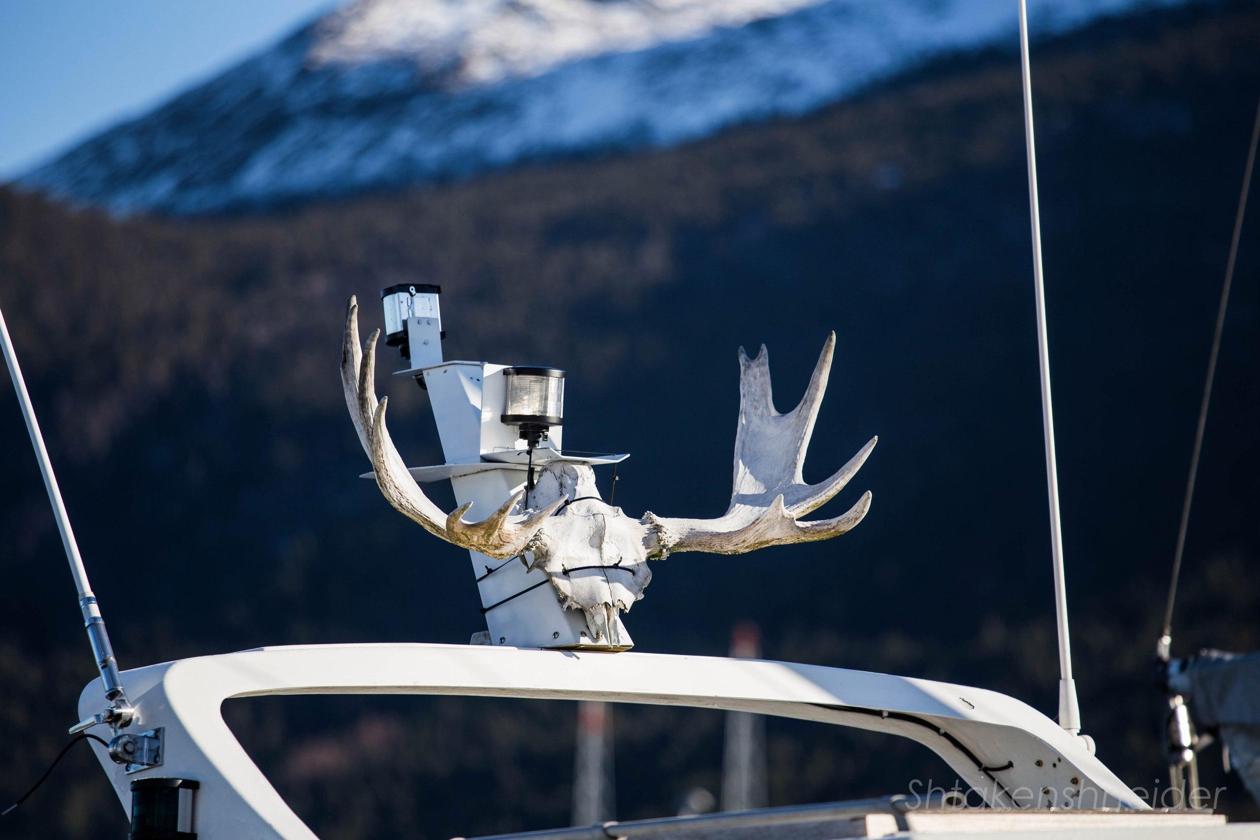Марина Хюснеса, Норвегия: фото деревни и местных яхт.
