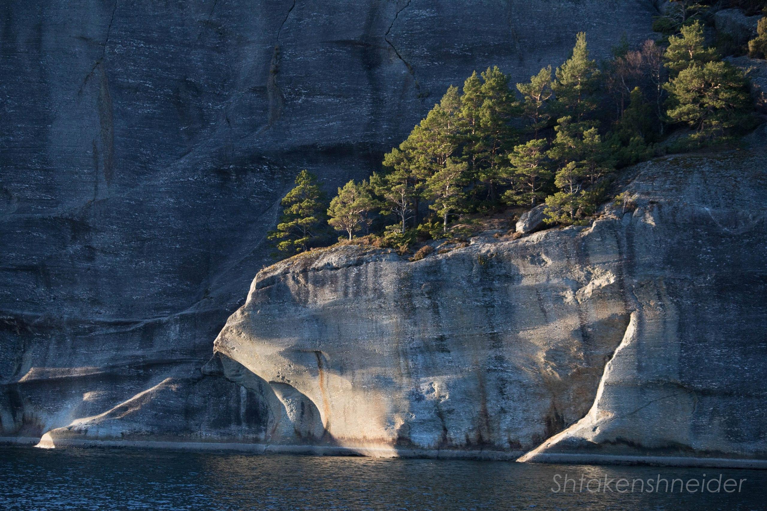 Русендал, Норвегия: фото скалистых берегов Хардангер-фьорда.